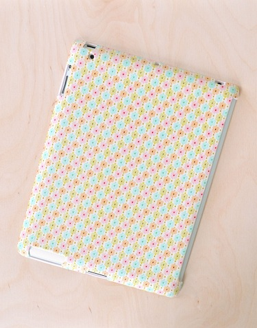 Dollar iPad Case