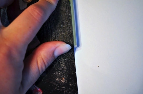 Trim pictures with a paper cutter