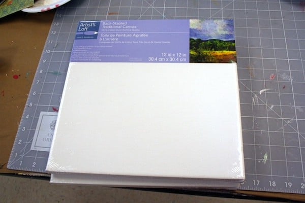 Two Artist's Loft square white canvases from Michaels