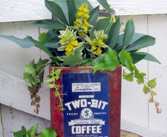 vintage coffee label planter