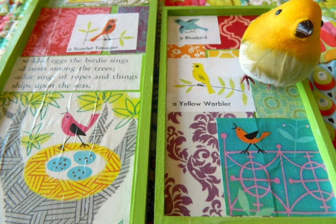 Make an illustrated bird tray
