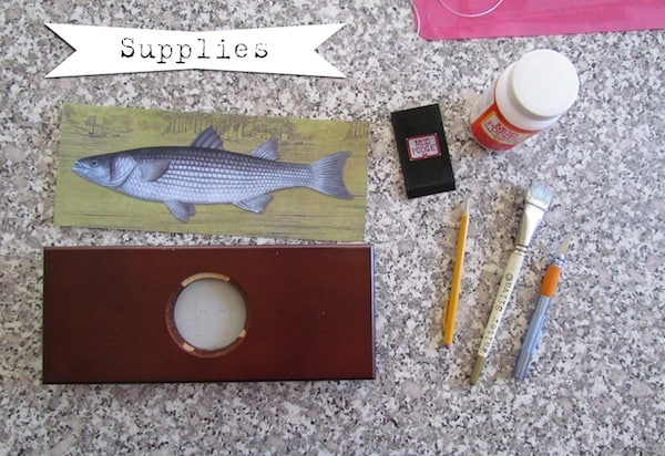 Fish Photo Frame Supplies