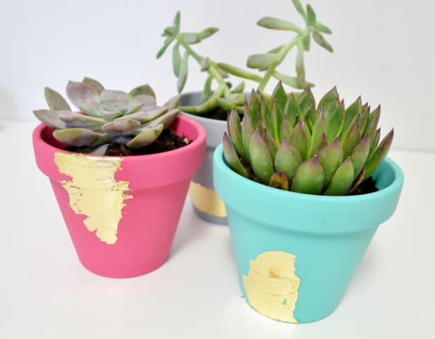 Make gold leafed, decoupage succulent planters