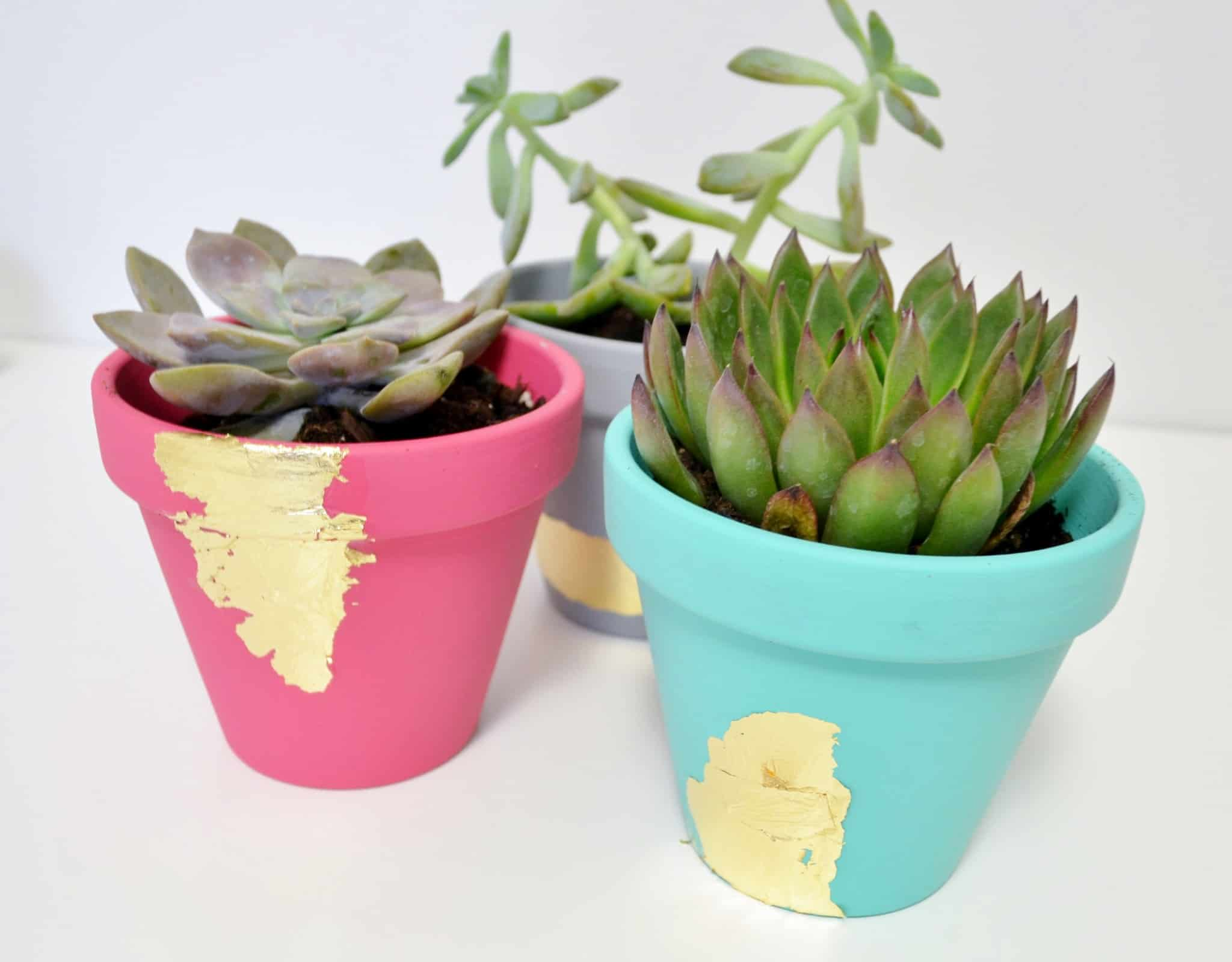 Easy Mod Podge gold leaf succulent planters