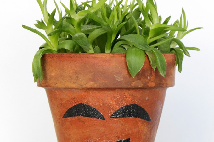 Clay pot craft: funny face planter