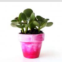 Simple Faux Glazed DIY Planter