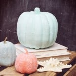 Do some simple pumpkin decorating with chalk finish, diamond dust, and Mod Podge! This craft idea is so easy and perfect for fall.