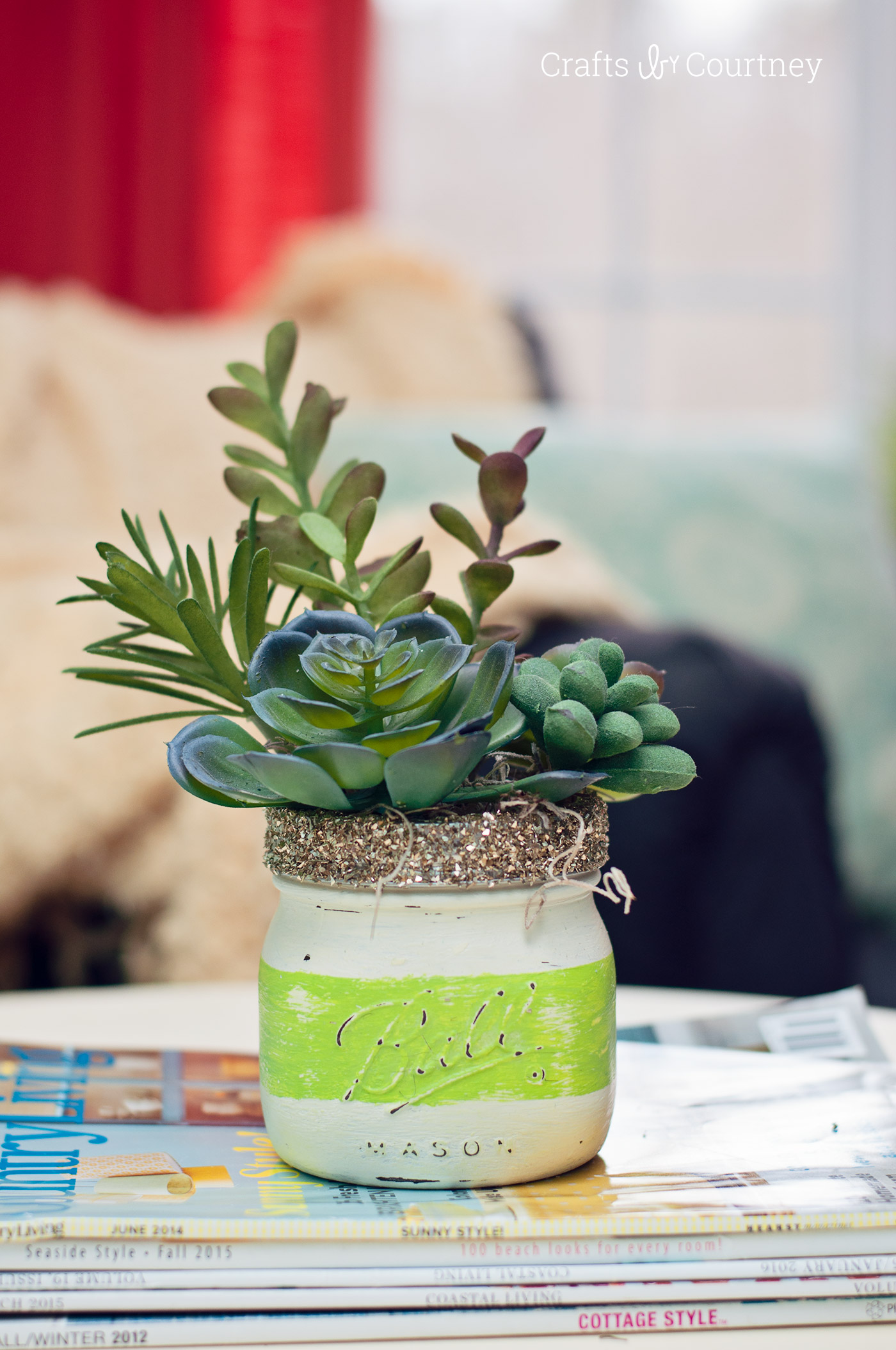 Spring Craft - Mason Jar Succulents