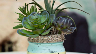 Chalk Paint Mason Jars with Succulents