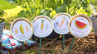DIY Garden Stakes from Mason Jar Lids