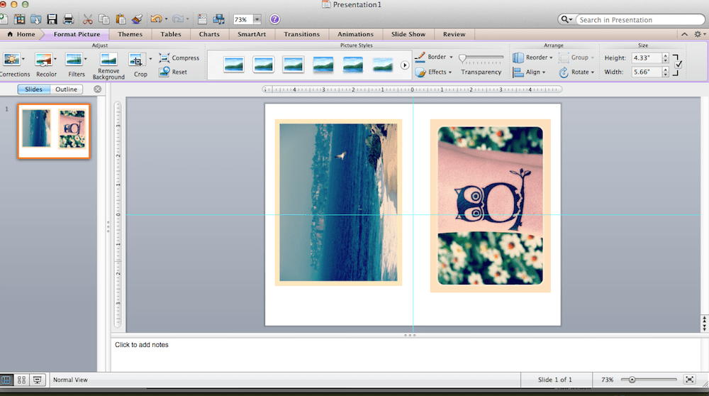 Two photos on one slide in Microsoft PowerPoint