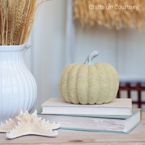 "Have you ever thought about giving your fall pumpkins the ""sand"" treatment? It's easy to get the coastal look with some Mod Podge! Learn how in this post."