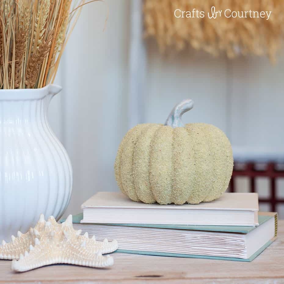 Coastal Pumpkin Craft with Sand