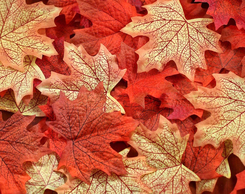 Faux autumn leaves for crafts
