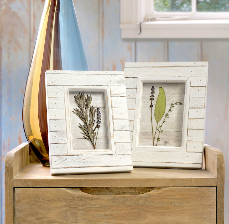 Pressed flowers in frames with Mod Podge