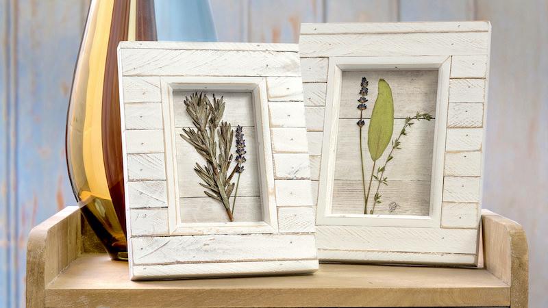 Pressed flowers in frames