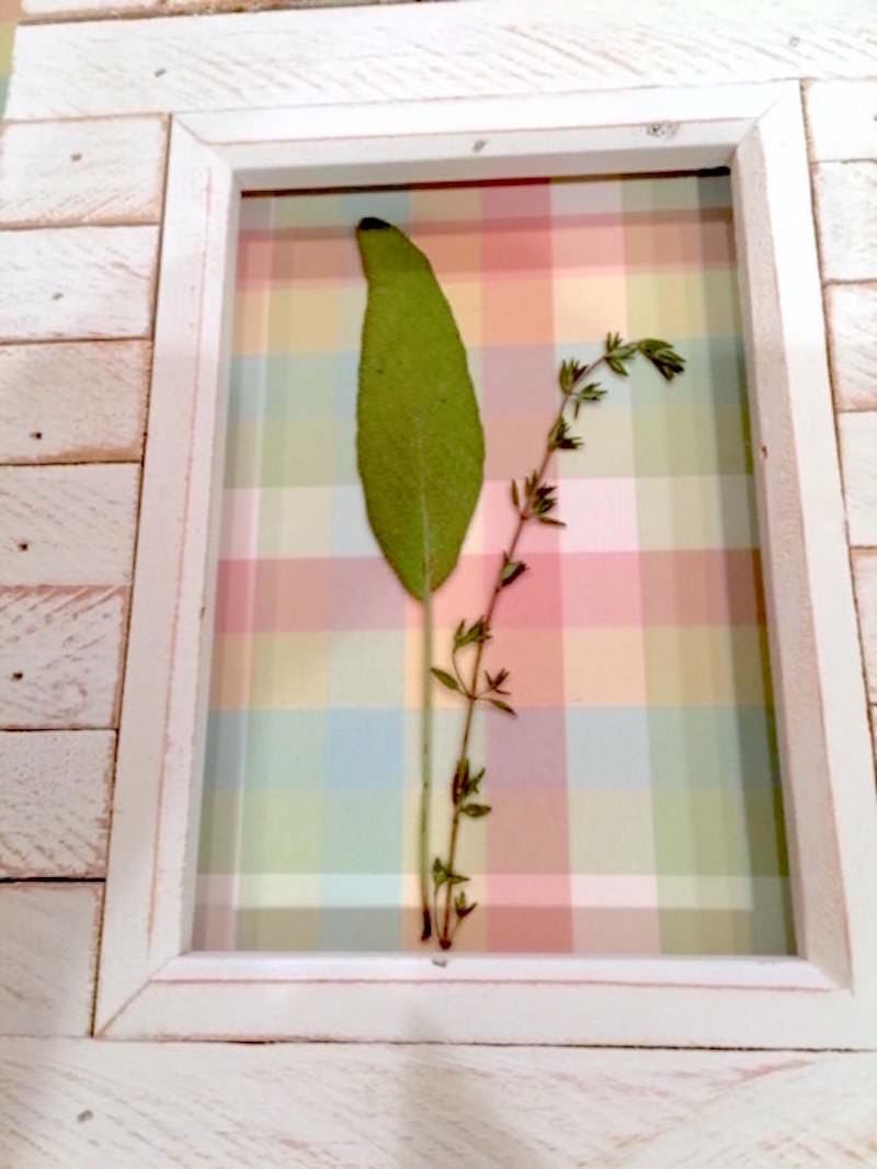 Pressed flowers inserted in a frame