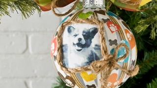 Pet Picture Christmas Ornament