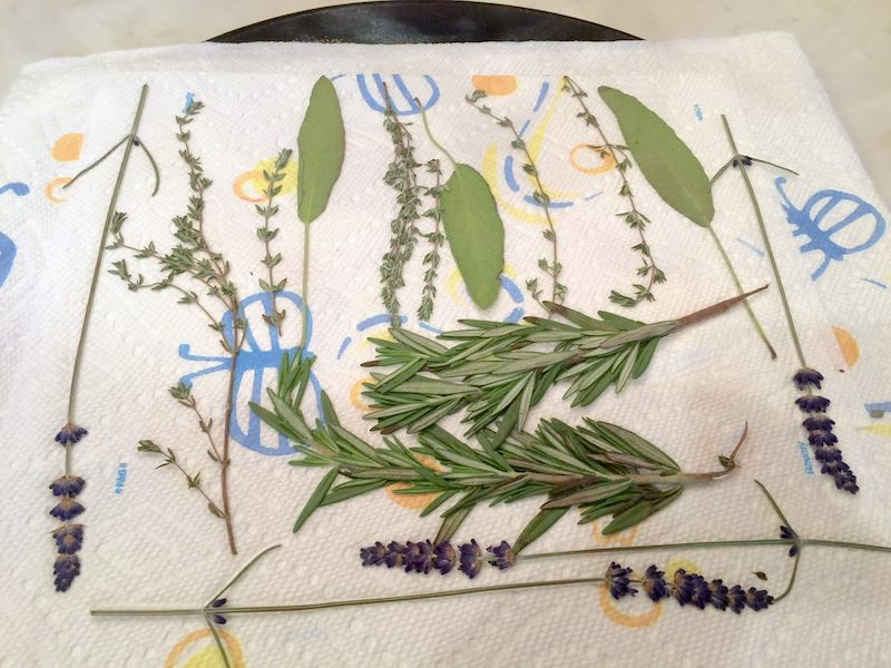 Flowers-and-leaves-laying-out-on-a-paper-towel