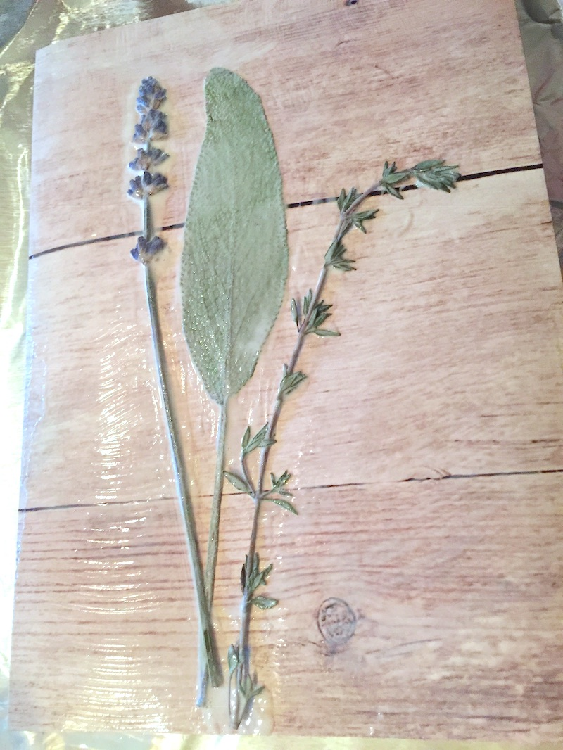 Pressed-flowers-laid-out-on-scrapbook-paper-with-Mod-Podge